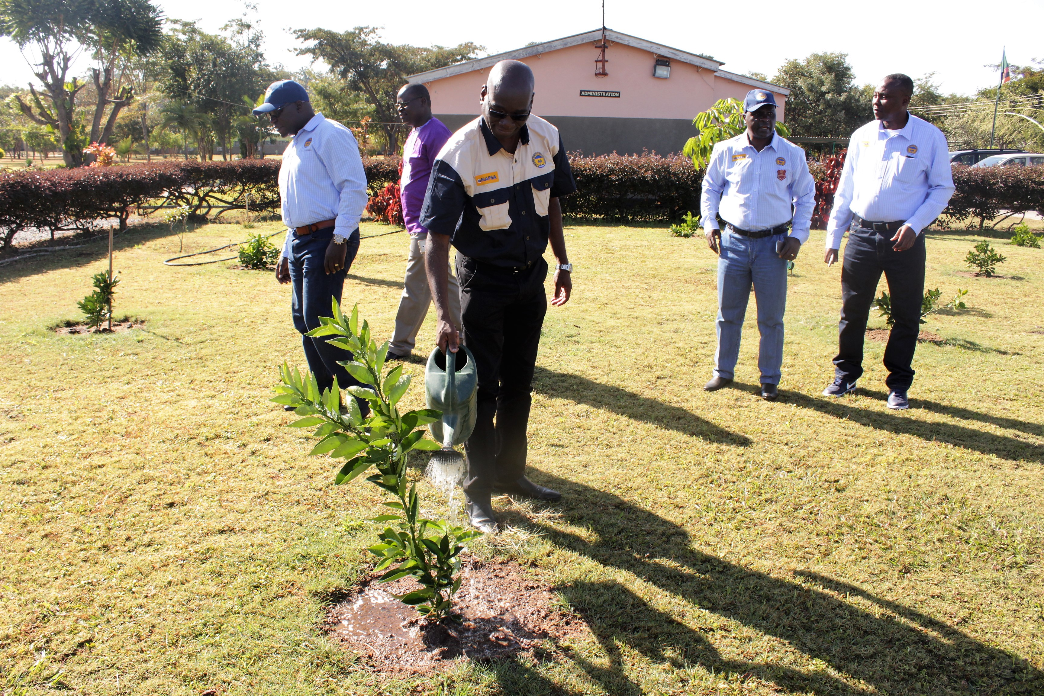 NAPSA DG tending an orchard setup by NAPSA at Ndola Girls Technical High School